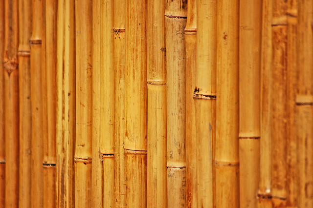 25 Free and Useful Examples of Bamboo Texture Designs