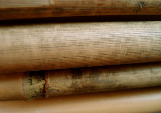 Bamboo close up closeup wood texture