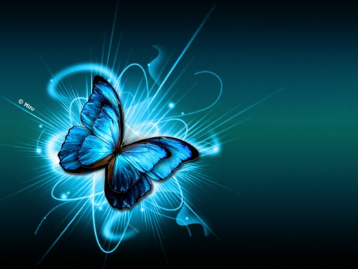 Blue Butterfly by Matherial Dreams