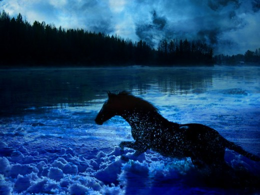 Ice Horse Wallpaper