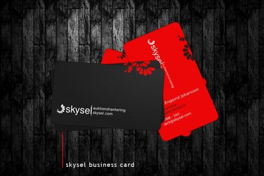 Skysel Business Card
