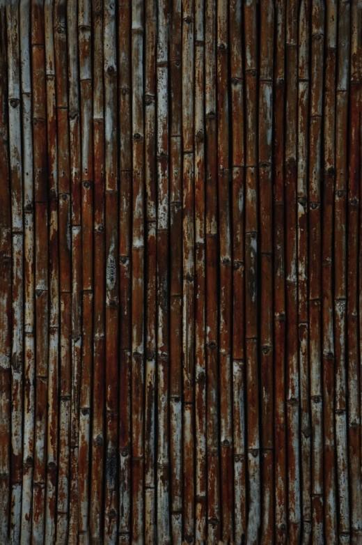 TEXTURE - Bamboo Wall