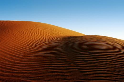 Desert Sand, Abu Dhabi