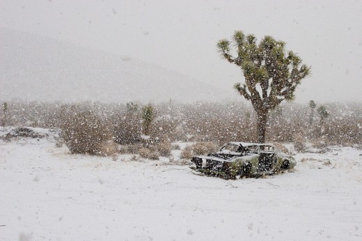 Desert Snow Storm, Mojave