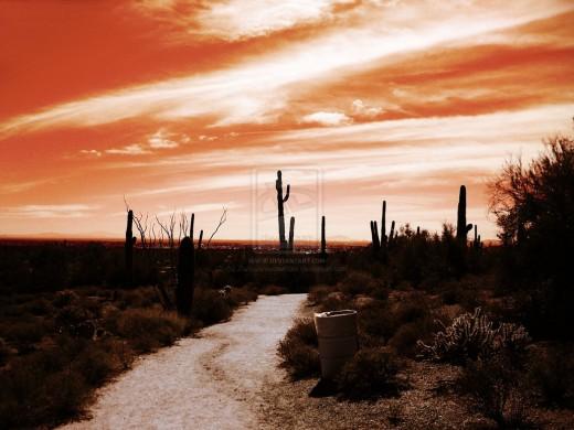 Desert and Sky I