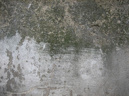Gray concrete wall reference for texture