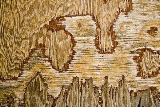 Worn Down Plywood