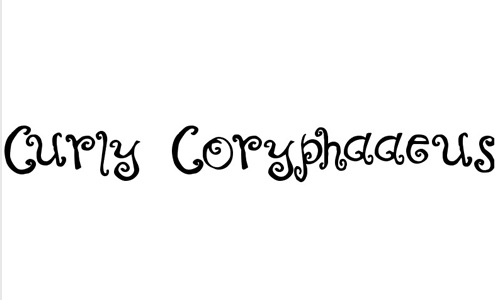Curly Coryphaeus