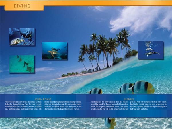 Fernando de Noronha Brazil Travel Brochure