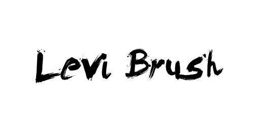 Levi Brush