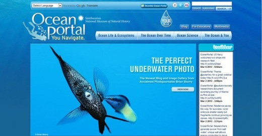 Ocean Portal