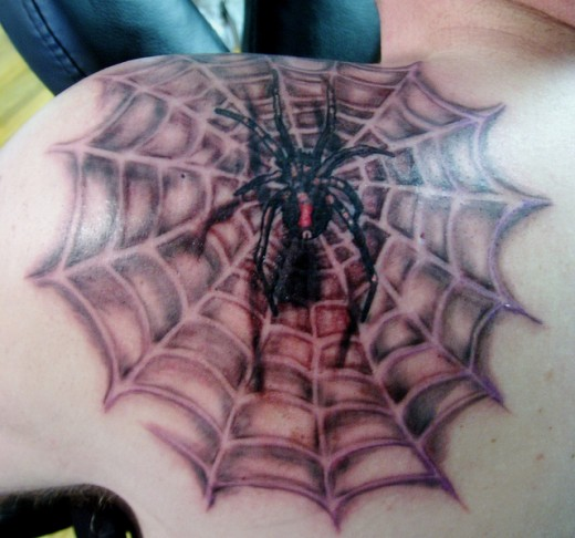 Black Widow Spider with Web