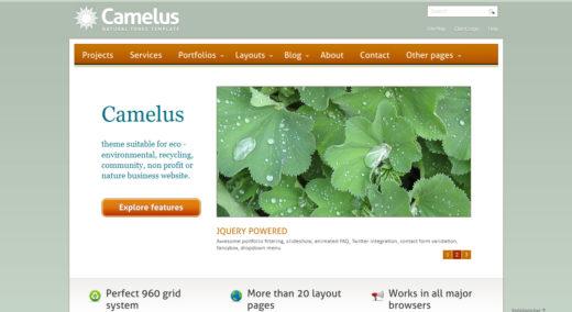 Camelus - Nature Tones Business Template