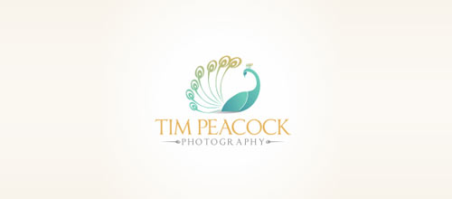 Tim Peacock Photography